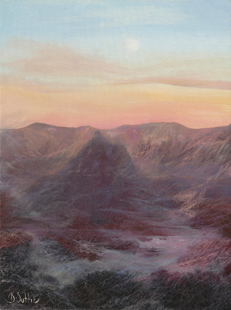 In the Shadow of Mt Warning by Barb Suttie